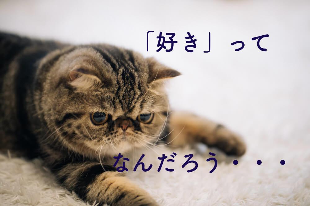 しょぼんとした猫