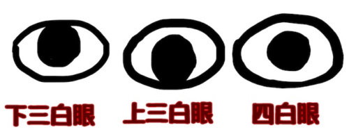 三白眼・四白眼