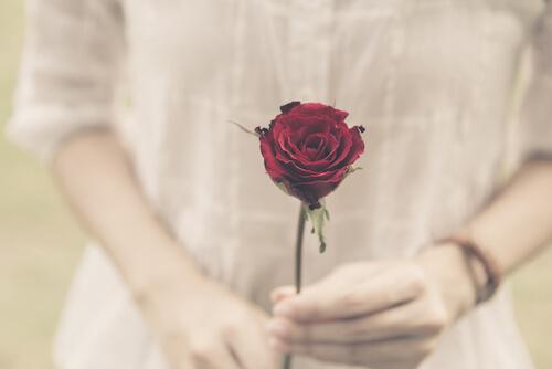 一輪のバラの花を持つ女性